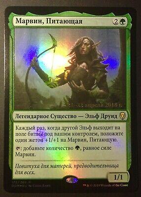 The Gathering MTG Dominaria The Nurturer M//NM Magic Foil Marwyn