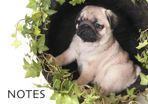 "A6 Notepad Perfect for Handbag Shopping List /& Notes Pugs /""Stocking Fillers/"""