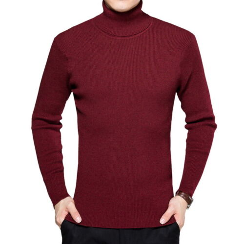 Men Solid Color Knitted Long Sleeve Sweater High Collar Turtle Neck Sweatshirts