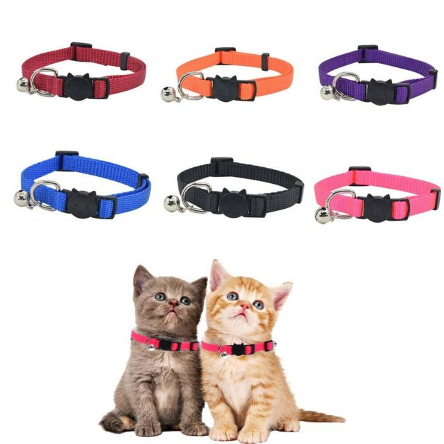 Buckle For Puppy Nylon Cat Necklace Pet Supplies Pet Collar Dog Accessories