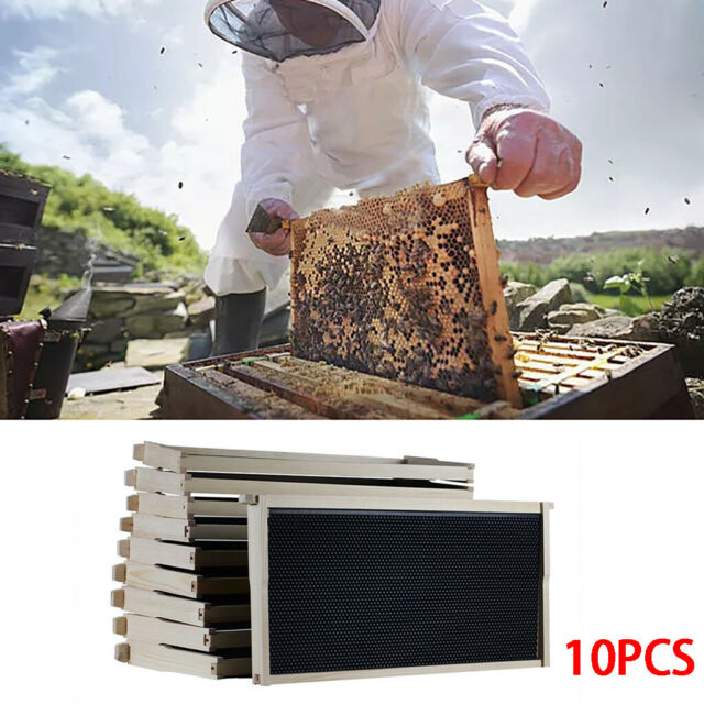 Beehive Langstroth 10 frame Frames not included.