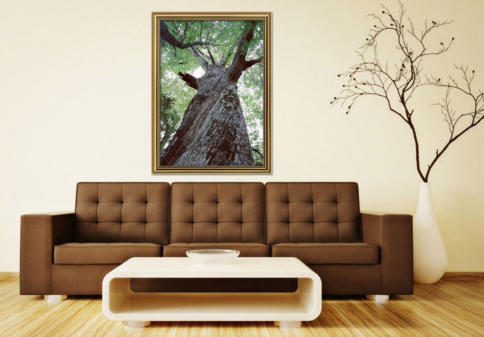 3D Big Tree 6 Framed Poster Home Decor Print Painting Art AJ AU