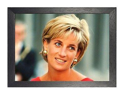 Lady Di 1 Princess Diane Spencer Poster  British Royal Family Photo Black White