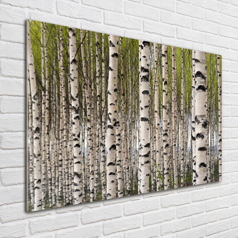 Wandbild aus Plexiglas® Druck auf Acryl 100x70 Blaumen & Pflanzen Birkenwald