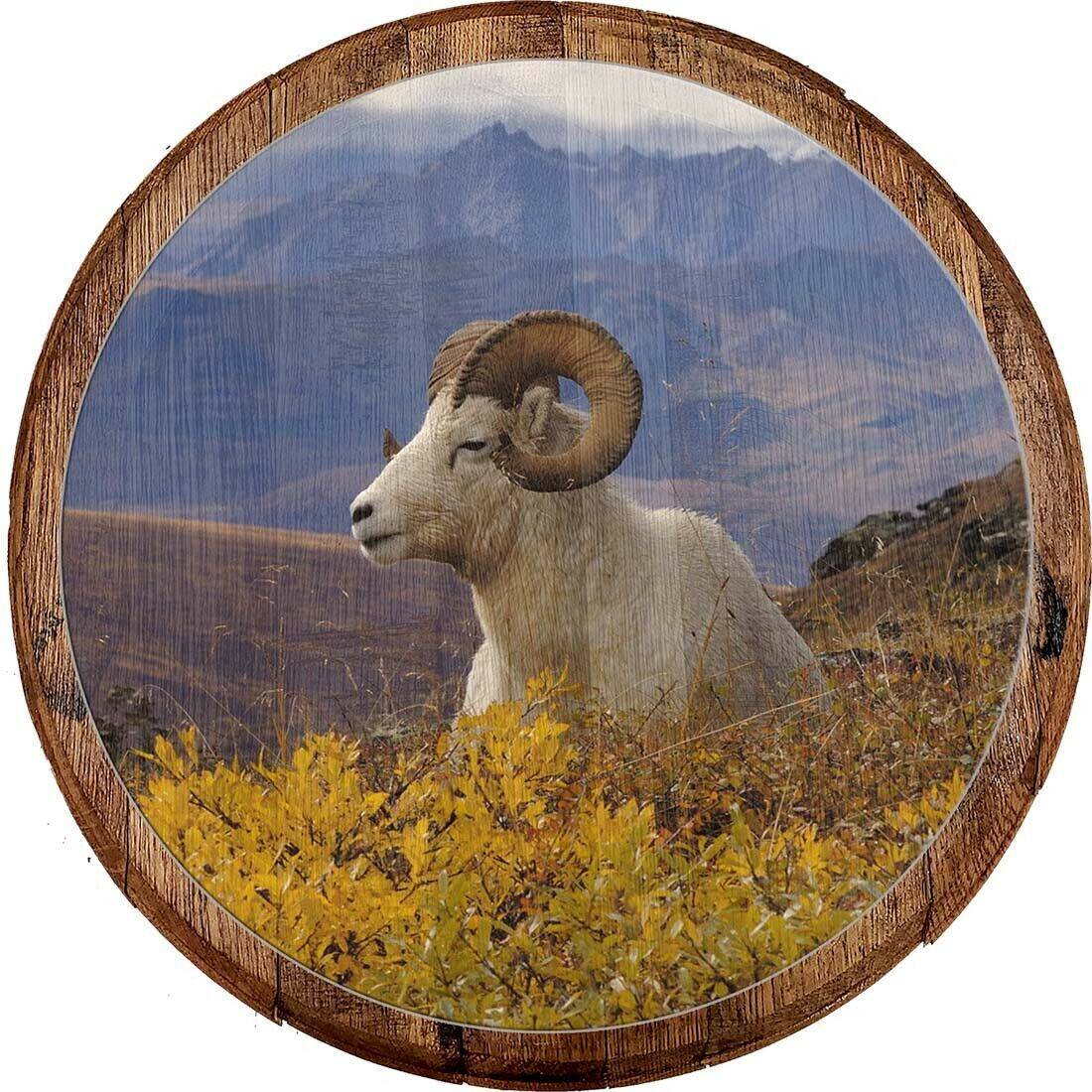 Whiskey Barrel Head Ram Horns in the Mountain Countryside Home Décor Wall Art