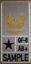 Bundeswehr-Nato-US-Dienstgradabzeichen-Combat-Patch-Personalisiertes-Klett-Patch Indexbild 7