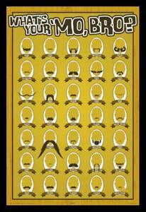 POSTER-Whats-Your-Mo-Bro-Moustaches