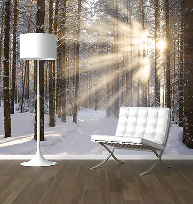 Winter Forest at Sunrise nature photo wallpaper mural feature wall design wm361