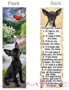 CHIHUAHUA DOG RULES Property LAWS BOOKMARK BLACK Brown Tan CHI Book Art Card
