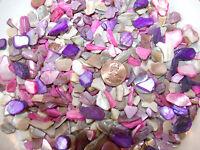 4oz Purple Pink Crushed Seashells Mosaics Vase Filler Sea Shells Craft Jewelry
