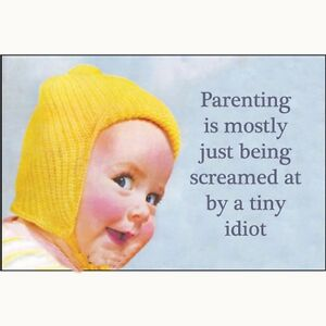 Parenting-is-mostly-just-being-screamed-at-funny-fridge-magnet-ep