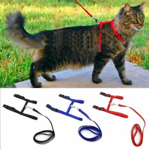 Cat-Dog-Collar-Harness-Leash-Adjustable-Nylon-Halter-Collar-For-Pet-Harness-Belt
