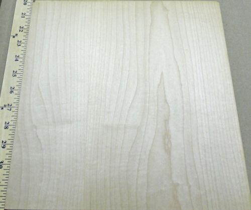 Maple wood veneer 11