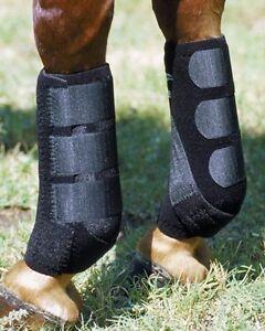 Profi-Sport-Pferd-Schutz-Stiefel-Paar-Western-oder-Englisch-Reitpferd