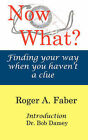 Now What? by Roger A Faber (Paperback / softback, 2007)