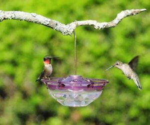 ASPECTS-434-HummBlossom-4-oz-HUMMINGBIRD-FEEDER-PLUM-COLOR-FREE-SHIPPING-dm