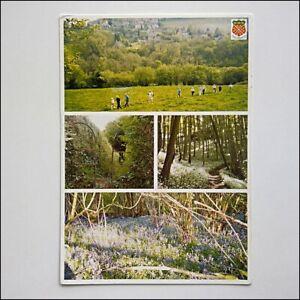 Walks-in-and-around-the-parish-of-Nailsworth-2002-Postcard-P426