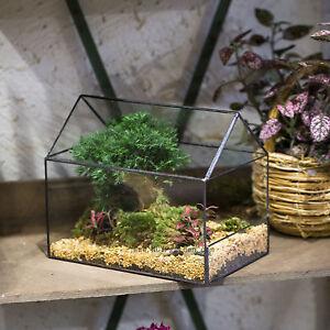 House Shape Glass Geometric Terrarium Tabletop Succulent Fern Moss