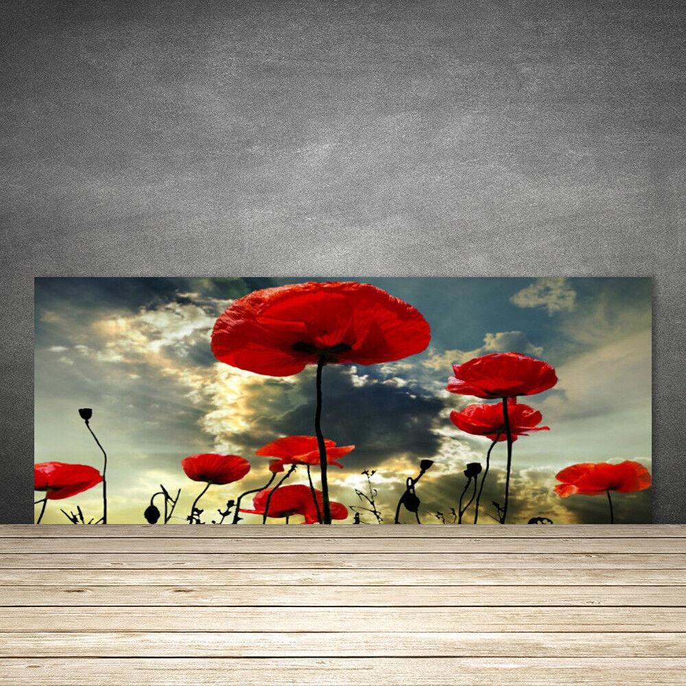Crédence de cuisine en verre Panneau 125x50 Floral Coquelicots
