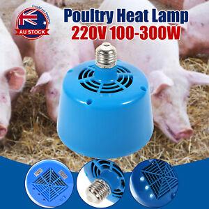 Poultry Heat Lamp Bulb Warming Light For Brooder Piglets Chicken Pet 220v J Ebay