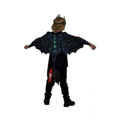 Boys Girls How To Train Your Dragon 3 Astrid Hiccup Light Fury Toothless Costume