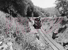West Side Lumber (WSL) Engine 10 with Log Train (View 3)  - 8x10 Photo