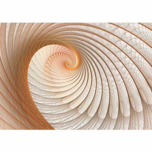 904 Fototapete Abstrakt Muschel Geflecht Netz Tunnel Spirale 3D liwwing no