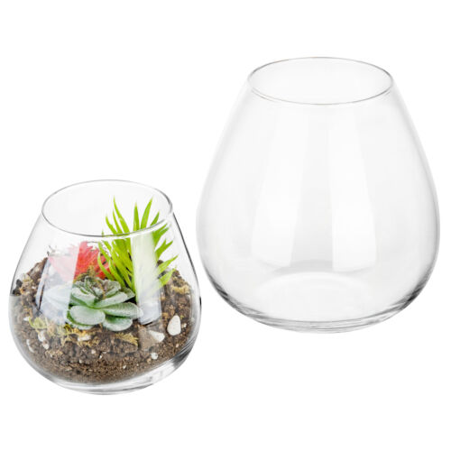 Set of 2 Decorative Round Clear Glass Display Vases Air Plant Terrarium Cups