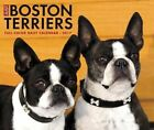 Just Boston Terriers - 2017 Boxed Calendar 16 X 13cm