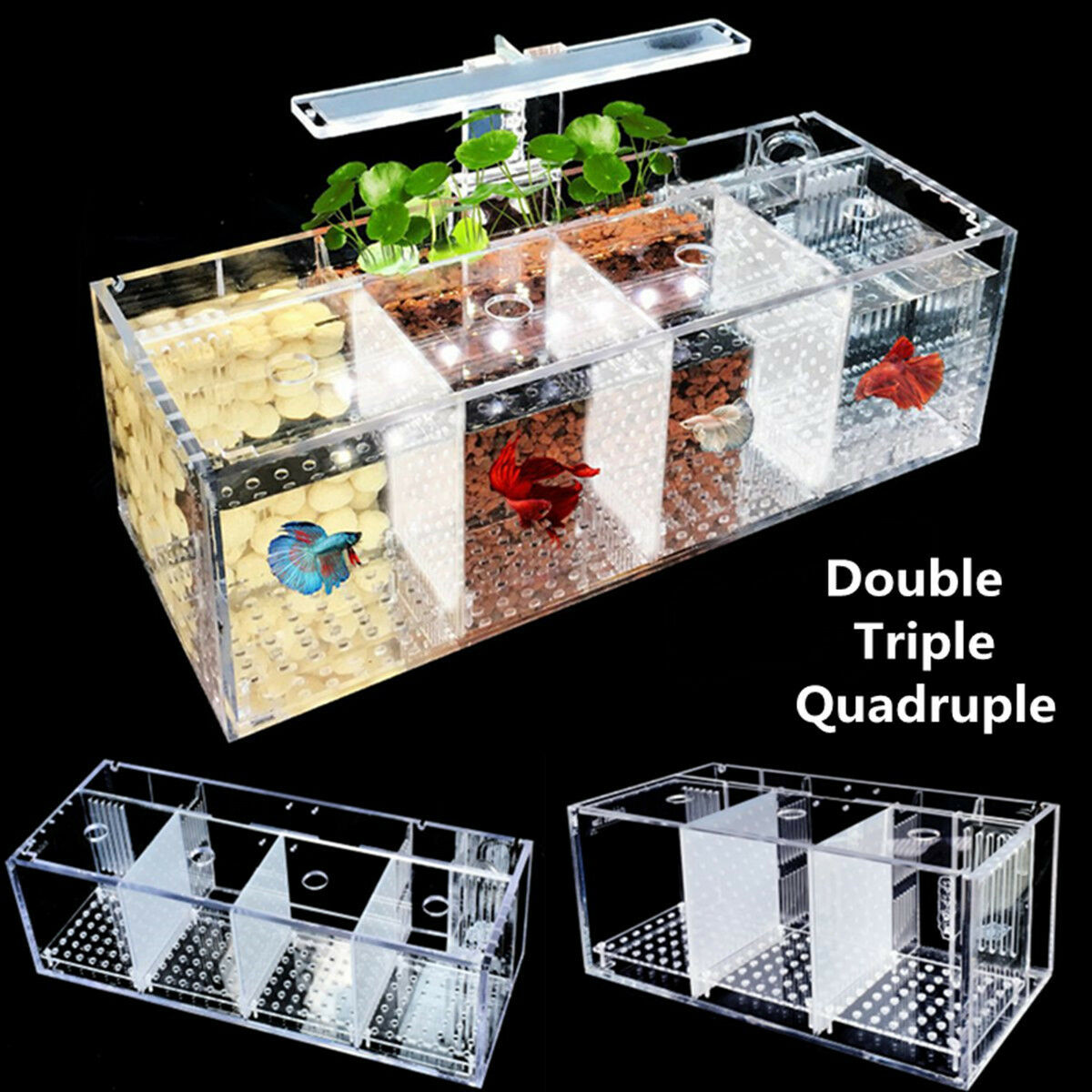 Acrylic Aquarium Baby Betta Fish Tank LED Light Breeding Hatchery Box 2 3 4 Grid
