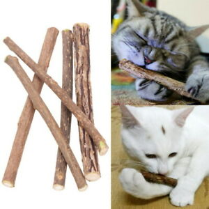 5-Stueck-Matatabi-Katzen-Kauhoelzer-Catnip-Snacks-Sticks-Katzenminze-Zaehne-Gesund