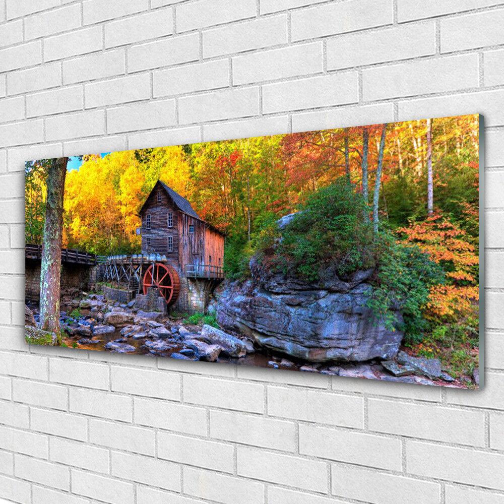 Impression sur verre Image tableaux 125x50 Nature Forêt Pierres