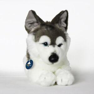 Stofftier-liegender-Husky-Schlittenhund-Hund-Kuscheltier-Plueschtier-L-ca-39cm