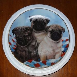 Three Little Pugs By Simon Mendez Limited Edition Danbury Mint