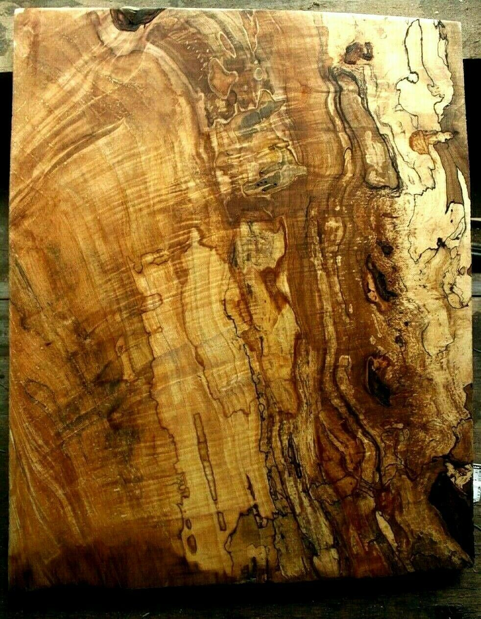 1pc 7 8  thk curly spalted figurot ambrosia maple carved top guitar bass 981
