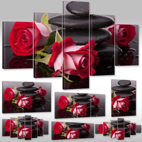 Nuevo imagen del lienzo muro canvas imagen son impresiones artísticas rosas rojas flores spa naturaleza wellness