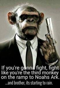 Image is loading Funny-monkey-refrigerator-magnet-3-1-2-x-
