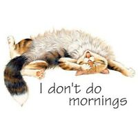 Sleepy Cat T Shirt, I Don't Do Mornings Kitty & Rubby Belly, Small - 5x, Women