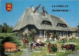 Animals-Postcard-Family-Normand-animals