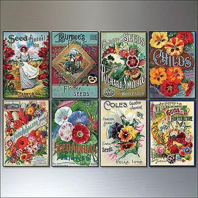Vintage Botanical / Horticultural seed packet fridge magnets - set of 8 - No.1