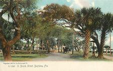 Rotograph Postcard Beach Street Daytona FL Volusia County