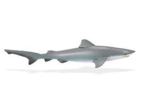 Bullenhai 14 cm serie animales acuáticos Safari Ltd 422429