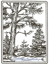 Winter Scene Trees With Birds Wood Mounted Rubber Stamp NORTHWOODS P9629 New