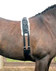 Horka Equestrian Cotton Lunging Aid Headcollar Pony Full Strong Durable Black