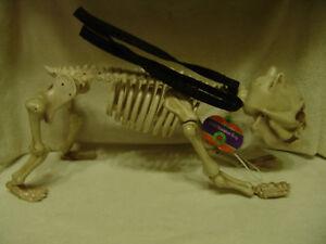 new halloween 23 inch animated skeleton dog w led