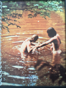 Details about for the WOODSTOCK soundtrack CONCERT skinny dipping fan /  Album Cover NOTEBOOK