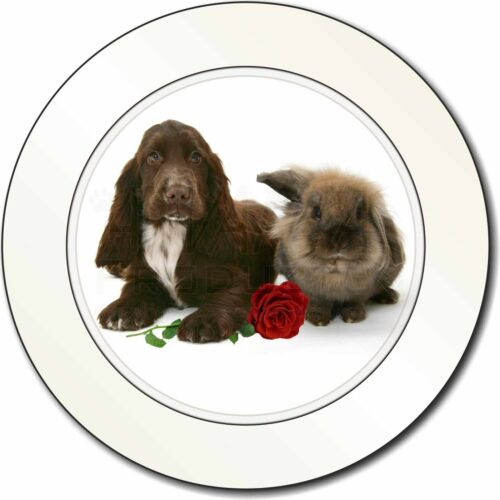 Cocker Spaniel with Red Rose Car/Van Permit Holder/Tax Disc Gift, AD-SC7RT