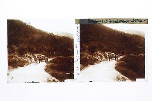 Corsica-Contadini-E-Agenti-Foto-Stereo-T2L2n-Placca-Da-Lente-Vintage