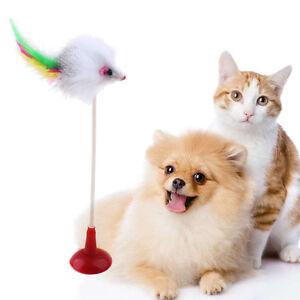 Hund Katze Lustig Spielzeug Saugnapf Falsch Maus Haustier Spielen