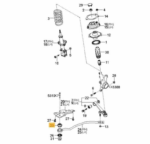 2x Lower Front Control Arm-//Trailing Arm Bush  for  Kia Rio